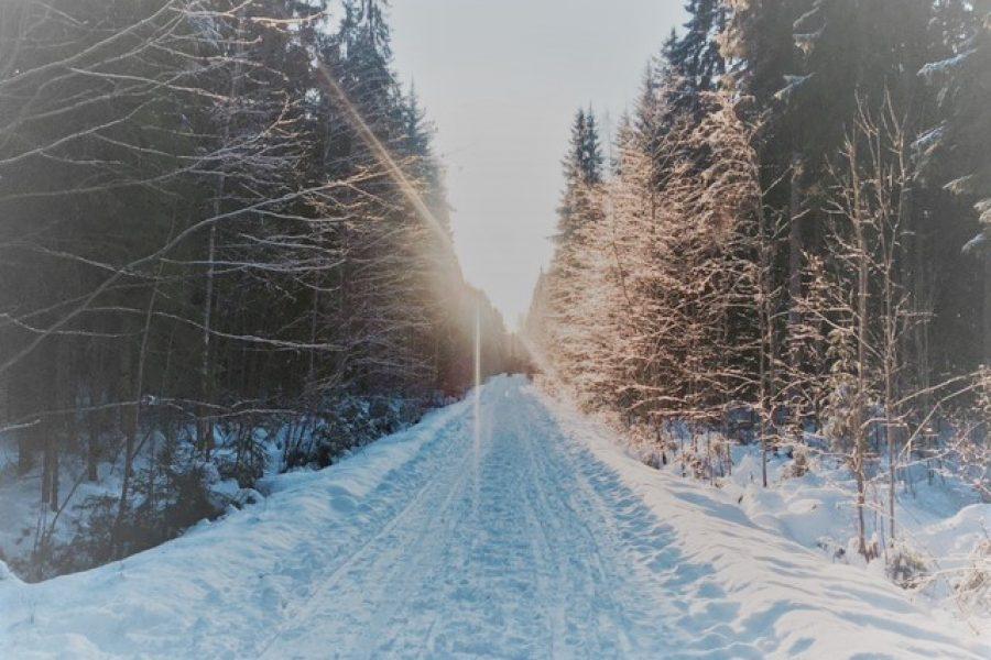 Tervetuloa Perttulan talveen!